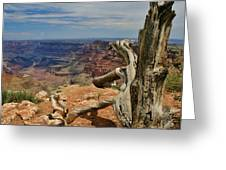 Grand Canyon And Dead Tree 1 Greeting Card