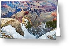 Grand Canyon In February Greeting Card