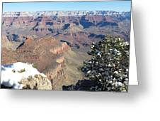 Grand Canyon Scene Greeting Card