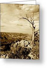 Grand Canyon Sepia Greeting Card