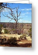 Grand Canyon View 6 Greeting Card