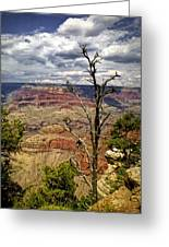 Grand Canyon View From The South Rim Greeting Card