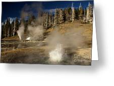 Grand Geyser Group Greeting Card