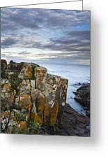Grand Marais Cliffs Greeting Card by Thomas Pettengill
