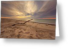 Grand Mere Sunset - Driftwood Greeting Card