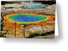 Grand Prismatic Spring No Border Greeting Card by Greg Norrell