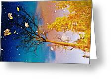 Grand Reflections # 1 Greeting Card