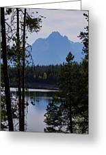 Grand Teton Framed By Cedars Greeting Card