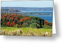 Grand Traverse Winery Lookout Greeting Card