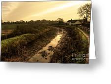 Grand Western Canal Nr Halberton  Greeting Card