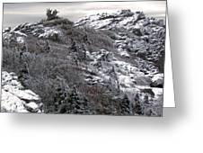Grandfather Mountain's Linville Peak  Greeting Card