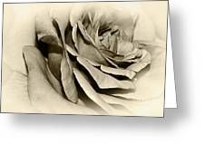 Grandma's Rose Greeting Card