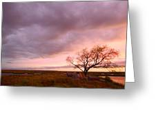 Storm At Dusk 2am-108346 Greeting Card