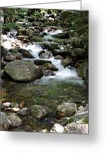 Granite Boulders In A River  Greeting Card