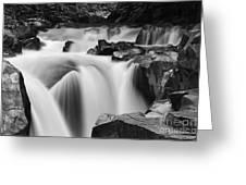 Granite Falls Black And White Greeting Card