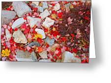 Granite Rocks Among Maple Leaves Greeting Card