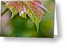 Grape Autumn Leaf Greeting Card