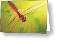 Grapeleaf Dragonfly Greeting Card