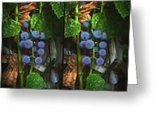 Grapes On The Vine - Gently Cross Your Eyes And Focus On The Middle Image Greeting Card