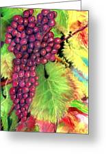 Grapes On Vine Pastel Greeting Card