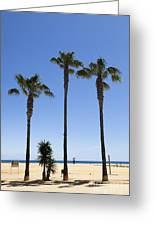 Graphic Image Of Palm Trees Blue Sky At Seaside Greeting Card