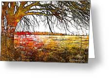 Graphic Tree Greeting Card