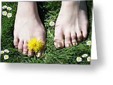 Grass Between My Toes Greeting Card by Stephen Norris