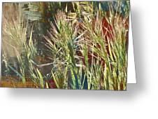 Grass In Sunlight Greeting Card