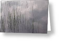 Grass Mirrors Sky Greeting Card