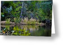 Grass On The Water Greeting Card