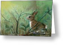 Grass Rabbit Greeting Card