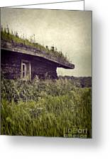 Grass Roof On Cottage Greeting Card