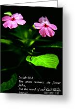 Grass Withers Flowers Fade Greeting Card by Thomas R Fletcher