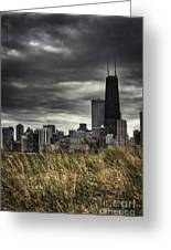Grasses Along The Skyline Greeting Card