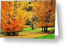 Grassy Autumn Road Greeting Card