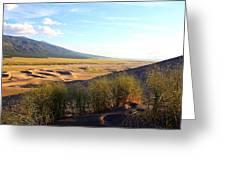 Grassy Dune Greeting Card