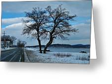 Grassy Point Winter Greeting Card
