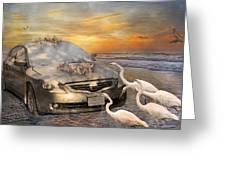 Grateful Friends Curious Egrets Greeting Card