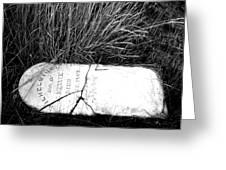 Grave Western Nevada  Greeting Card