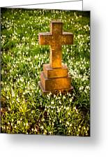 Gravestone With Snowdrops Greeting Card