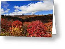 Graveyard Fields In The Mountains Greeting Card