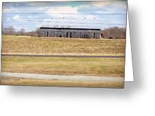 Gray Barn In A Cornfield Greeting Card