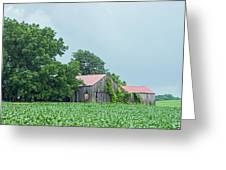 Gray Sky - Red Roofed Barn - Green Fields Greeting Card