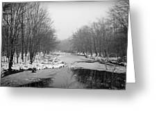 Gray Stream Greeting Card