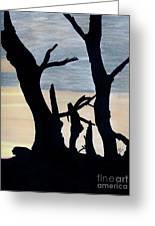 Gray Sunset Greeting Card