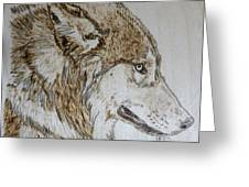 Gray Wolf Pyrographic Wood Burn Original 5.75 X 5.75 Inch Art Panel Greeting Card