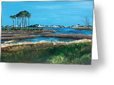 Grayton Beach State Park Greeting Card by Racquel Morgan