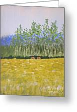 Grazin In The Grass Greeting Card