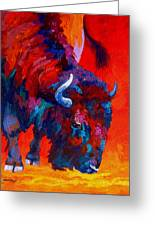 Grazing Bison Greeting Card by Marion Rose