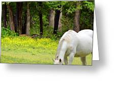 Grazing In Golden Fields Greeting Card